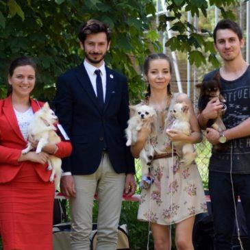 Krajowa wystawa psów rasowych w Kaliszu – Dzień drugi